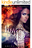 Power of the Fae (The Mirrored Prophecy Book 1)