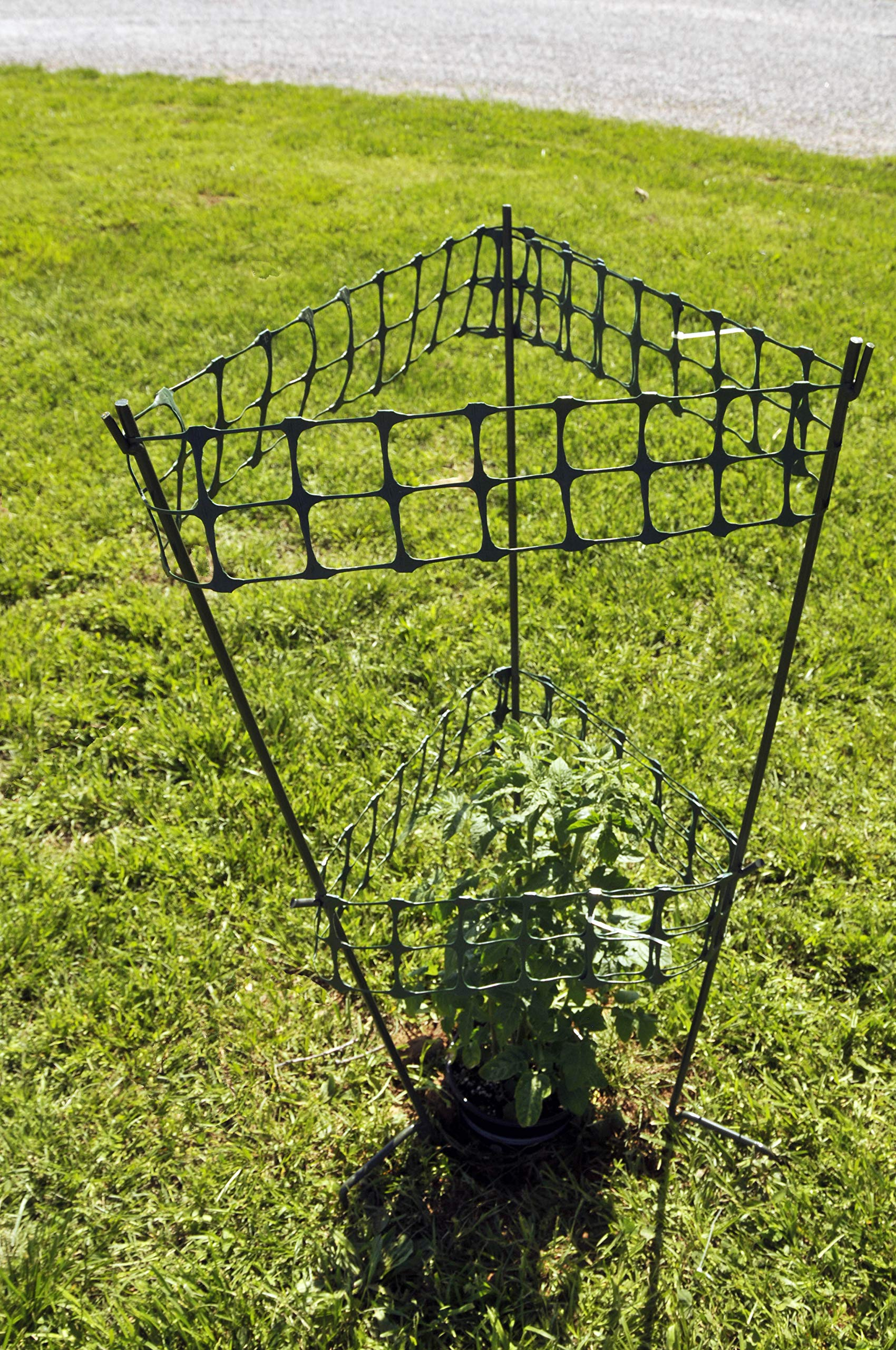 One Step Fencing Tomato Cages 4 Cages, Adjustable, Holds Up to Heavy Tomatoes, Wind and Rain