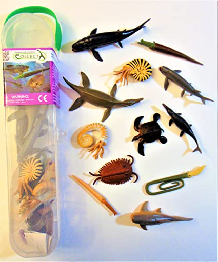 12 Assorted Marine Animals Set A Collecta Animals Tube