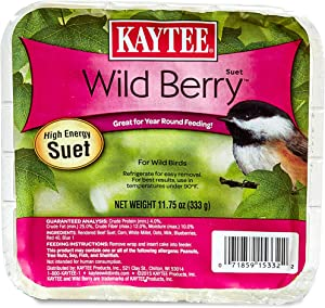 Kaytee Wild Berry High Energy Bird Suet, 11.75 Oz
