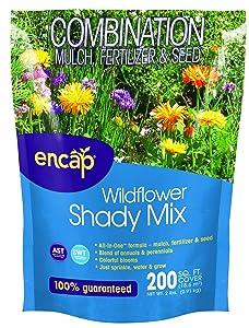 Encap 10811-6 Wildflowers Shady Mix, 2 Pounds