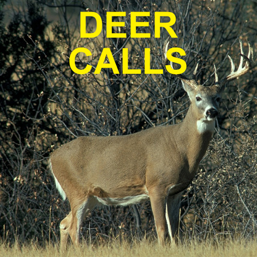 Deer Calls for Deer Hunting (Bleat Doe Sound)