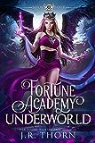 Fortune Academy Underworld: Book Four