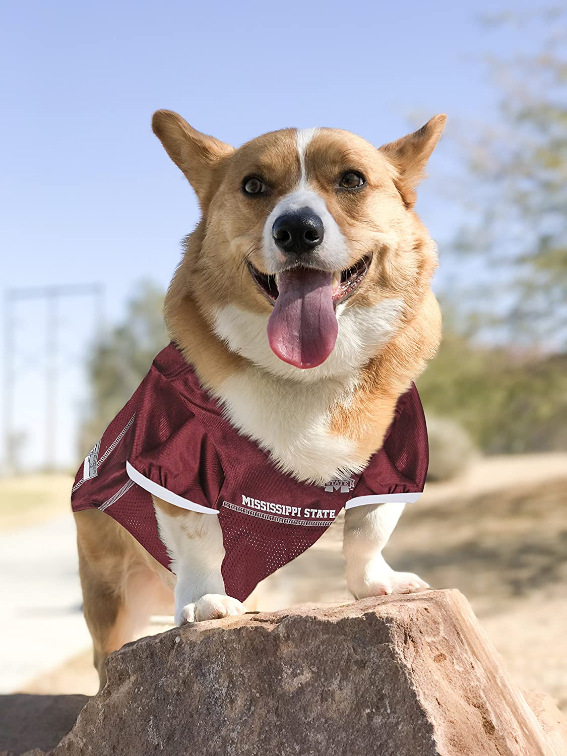 Basketball Jerseys Collegiate Teams /& 7 Sizes Pets First NCAA PET Apparels Football Jerseys for Dogs /& Cats Available in 50
