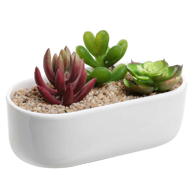 Modern Unique Home Decor Twisted Succulent Planter Pot
