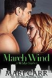 March Wind (Wilder Irish Book 3)