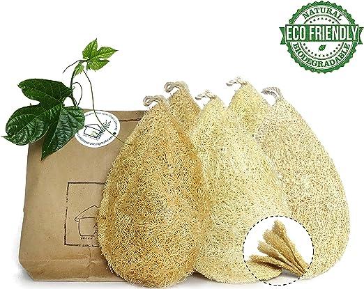 Paquete de 5 esponjas de vegetales naturales para cocina, 100 ...