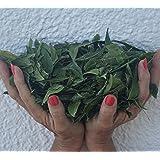 Neem Leaves Whole, Slow, Shade dried. Premium, Organic, USA (5 Oz) for Tea, Boost Immune System, Bathing, Skin Irritations!