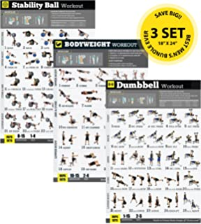Gym Home Exercise Posters Set Of 3 Workout Chart NOW Laminated