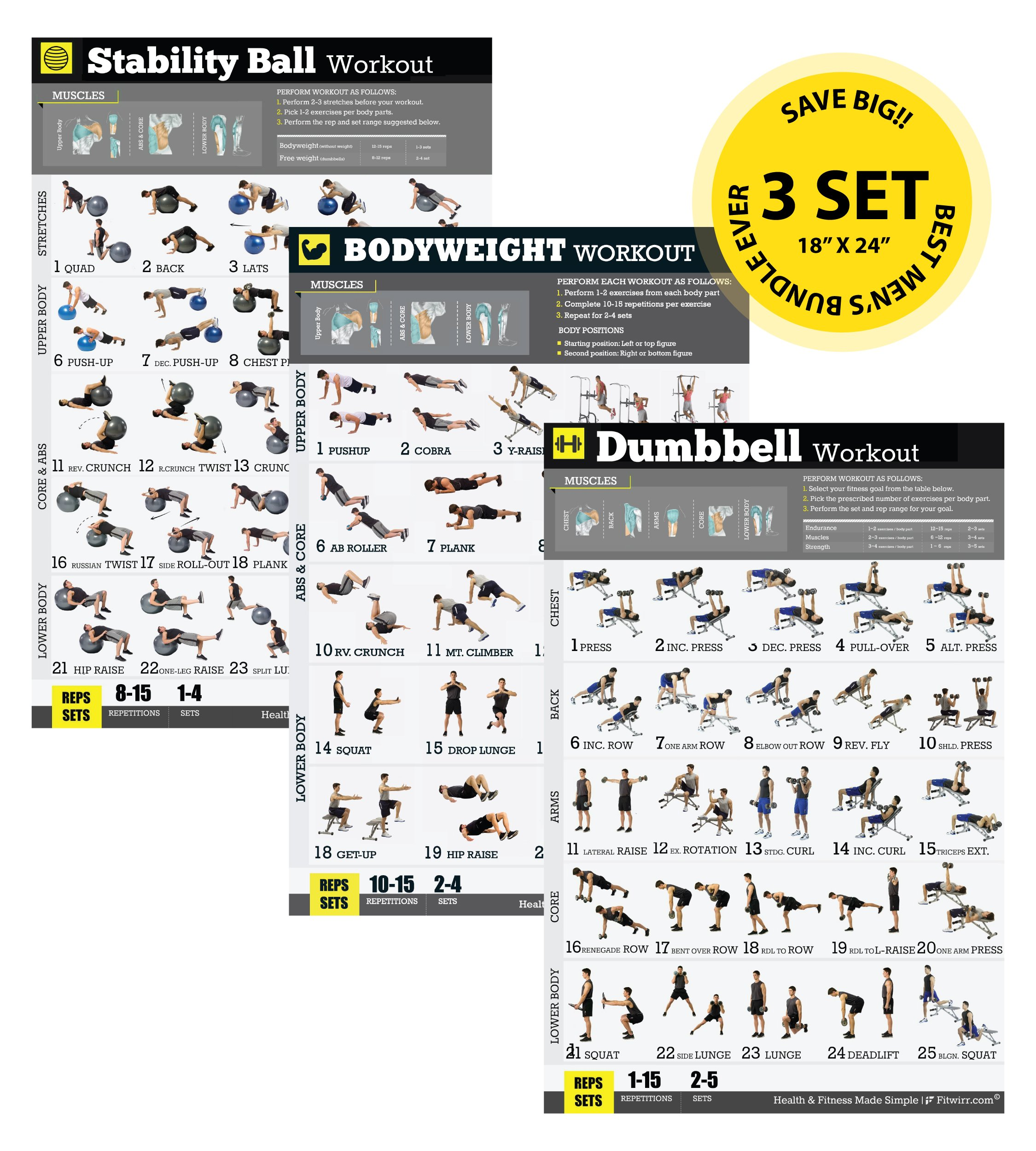 Home/Gym Exercise Poster 3-Pack Laminated - Build Strength, Muscles and Burn Fat - Completely Transform Your Body - Workout Posters - Strength Training - Weight Lifting - Body Building Guide 18''x24''