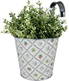 Esschert design vaso di fiori, Ãoebertopf nel design Botanicae con gancio, 16 cm x 27 cm x 27 cm