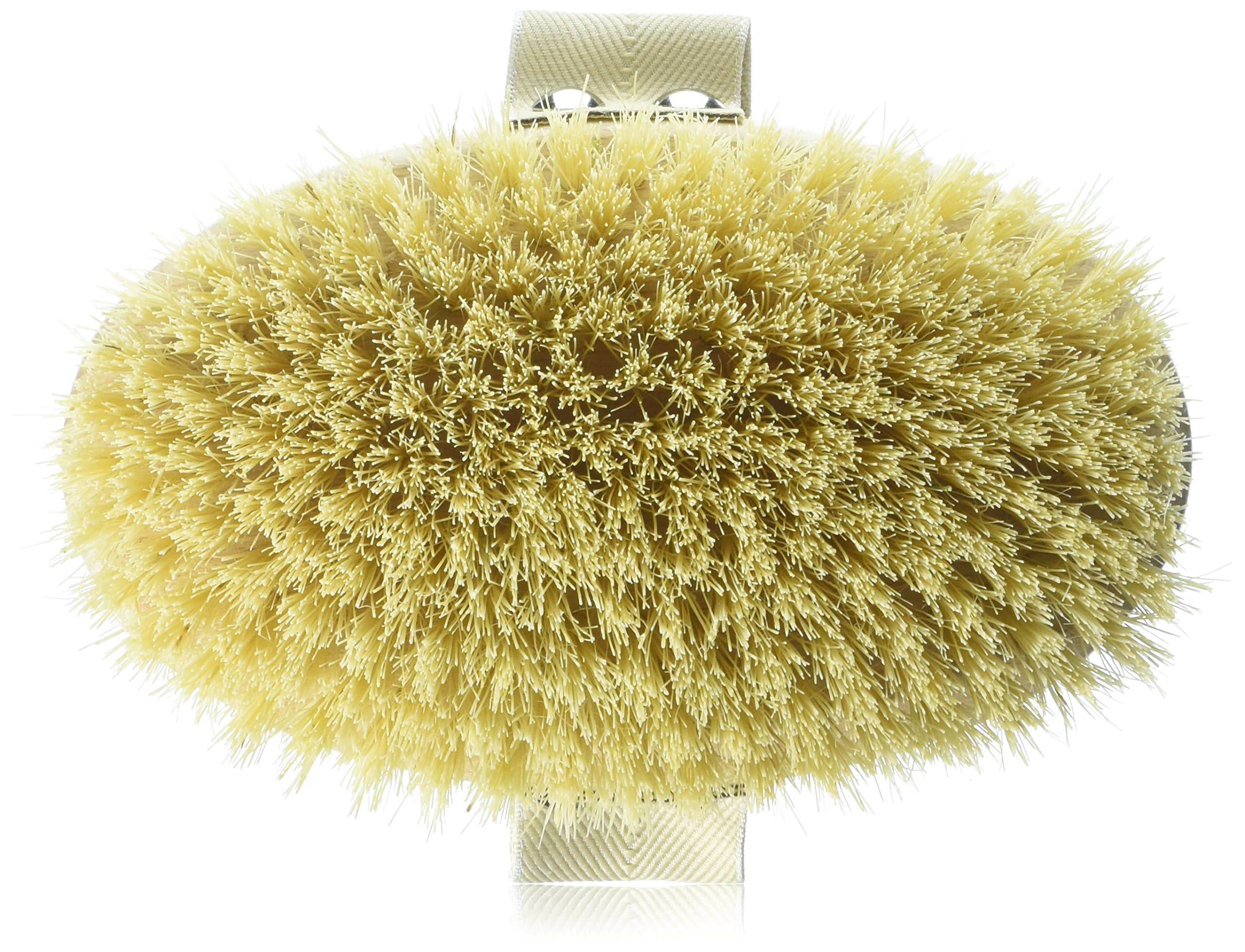 Hydrea Professional Dry Skin Body Brush with Cactus Bristles (Firm/Extra Firm Bristles) by Hydrea London