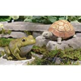 Frog Hide-a-key