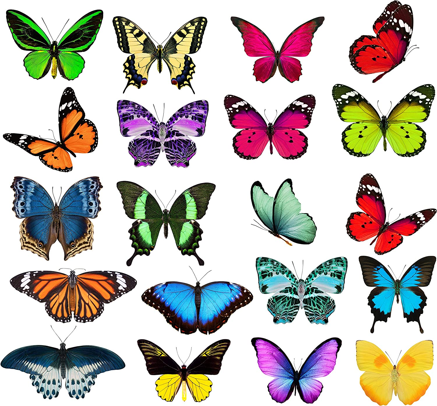 Butterfly Window Clings - 20 x Anti Collision Decals to Prevent Bird Strikes on Doors & Windows - Static, UV Resistant & Non Adhesive Vinyl Cling – Deterrent Decal & Glass Decor to Alert Birds