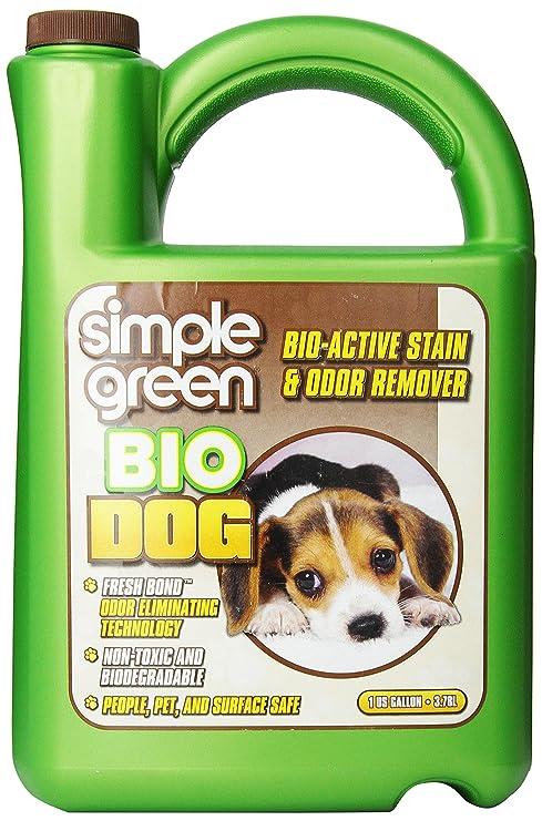 Remove Dog Bile From Carpet Carpet Vidalondon