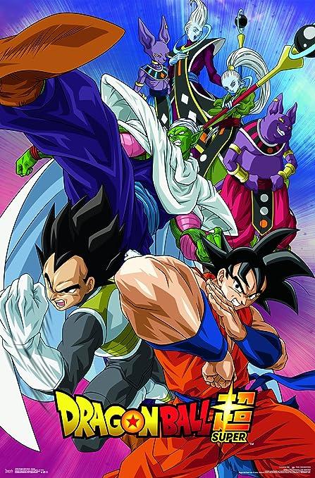 Trends International Dragon Ball Super Group Premium Wall Poster 22 375 X 34