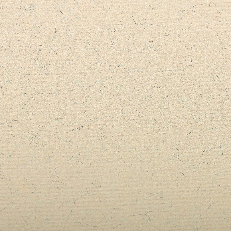 Clairefontaine 93480C Packung Packung Packung (mit 25 Blätter, 130 g, Ingres Pastell Papier, gekörnt, 50 x 65 cm, ideal für Trockentechnik) weiß B004HE4BUA | Spielen Sie auf der ganzen Welt und verhindern Sie, dass Ihre Kinder einsam sind  a9c416