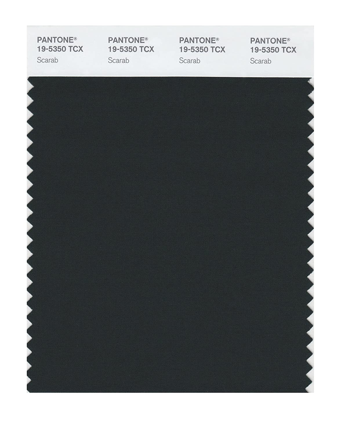 Pantone 19 5350 TCX Smart Color Swatch Card Scarab