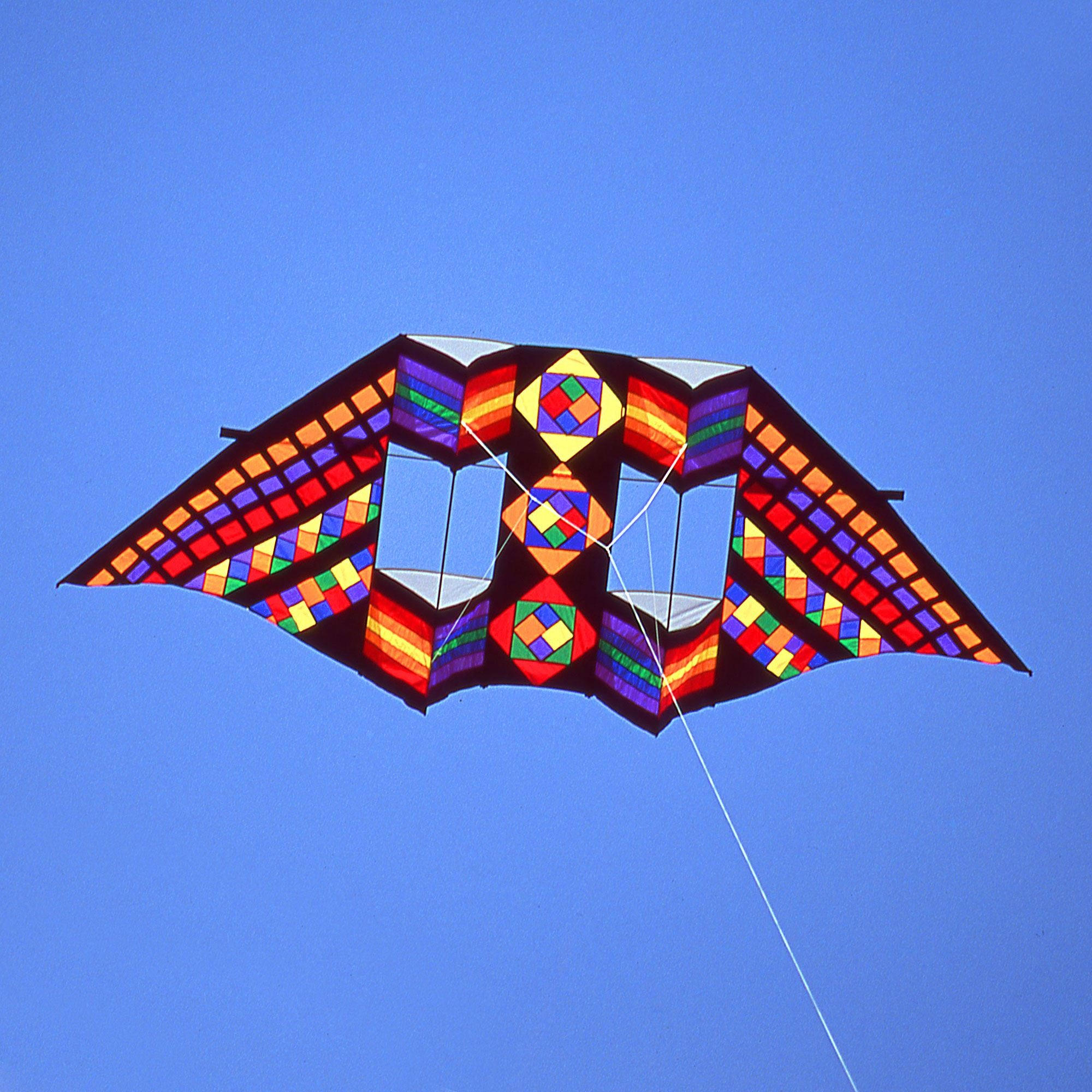 Swept Wing Double Box Delta Kite by Premier Kites