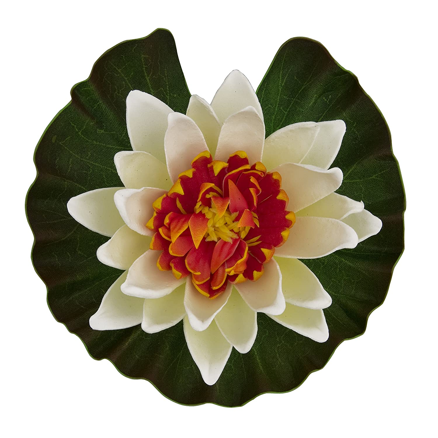 Amazon tetra pond floating water lily colors may vary pet amazon tetra pond floating water lily colors may vary pet supplies izmirmasajfo