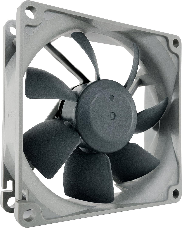 Noctua NF-R8 redux-1800 PWM, Ventilador de Alto Rendimiento, 4 Pines, 1800 RPM (80mm, Gris)