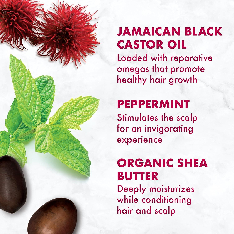 Sheamoisture Jamaican Black Castor Oil Shampoo 163 Head Ampamp Shoulder Sampo Clean And Balanced 480 Ml Ounce Beauty
