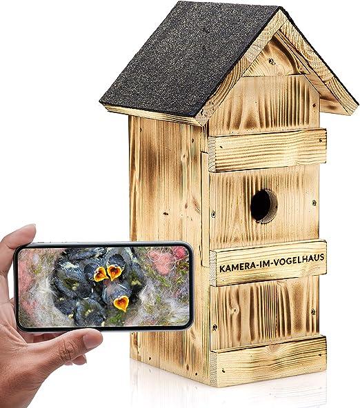 Caja nido con WiFi Cámara de de Cámara en casa de pájaros (HD de resolución, WIFI, IR de visión nocturna, sonido, App): Amazon.es: Productos para mascotas