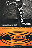 Water Wars: Privatization, Pollution And Profit (English Edition)