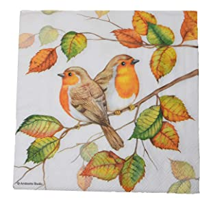 Fall Napkins | Bird Napkins | Decoupage Napkins | Decorative Fall Paper Napkins | 40 Lunch Napkins | Fall Dinner Napkins Paper | Fall Cocktail Napkins | Thanksgiving Napkins | Dessert Napkins Robins