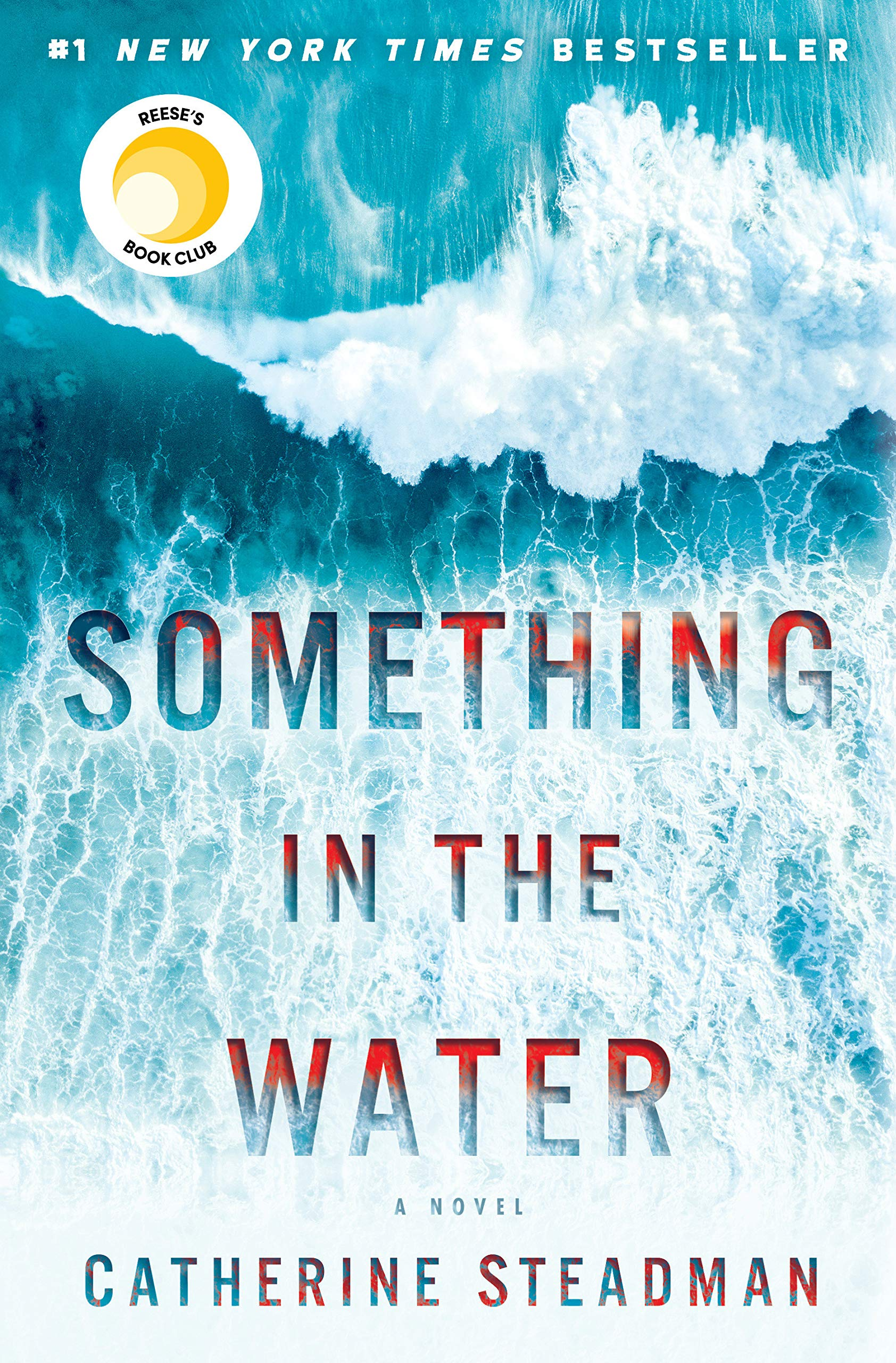 Something in the Water: A Novel: Steadman, Catherine: 9781524797188: Amazon.com: Books