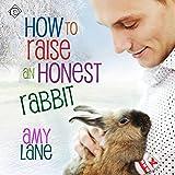 How to Raise an Honest Rabbit: Granby Knitting Series