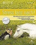 Stress lass nach: Pferdetraining optimal gestalten