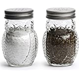 Circleware Hoot Owl Glass Salt and Pepper Shakers, Set of 2, 5 oz., Clear