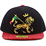 THE HAT DEPOT 1100 Rasta Lion of Zion 3D Embroidered Flat Bill Snapback Cap  Hat ced844131f21