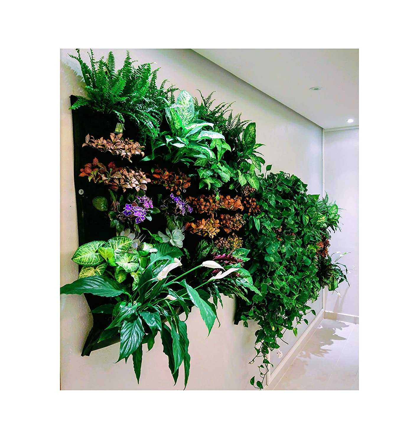 Vertical Living Wall Amazon.com: 12 Pocket Indoor Waterproof Vertical Living Wall Planter:  Garden u0026 Outdoor