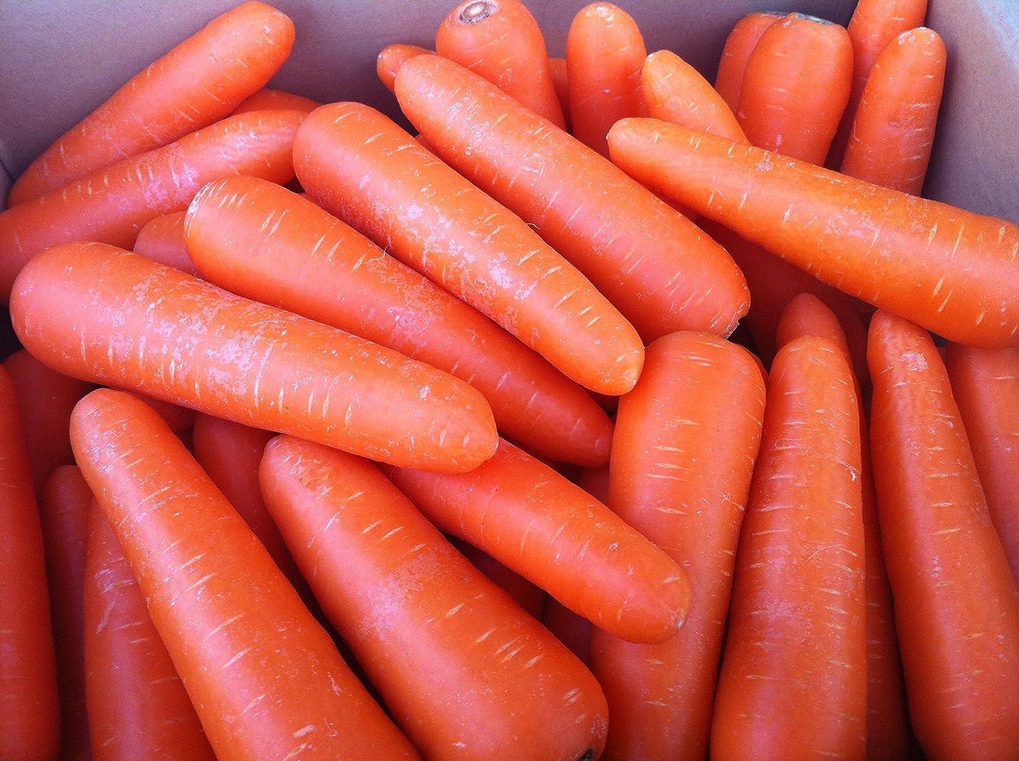 おブラウス専門化する北海道産 野菜セット 旬の新鮮お野菜詰め合わせ 7品種以上 80サイズ 約4?5kg 調理しやすい常備野菜がメインのつめあわせ