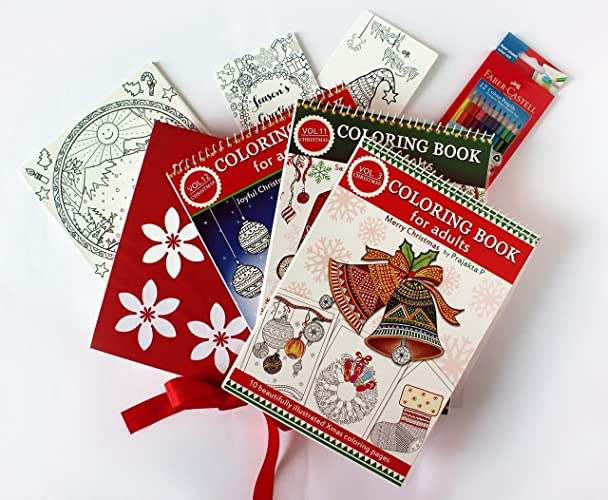 Amazon.com: Christmas Coloring Gift Set For Adults - 3 coloring ...