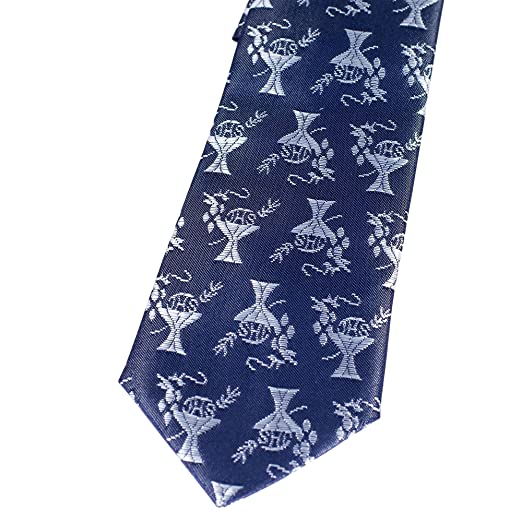 1301dfefe4a0 Amazon.com: Boys Pre-Knotted Navy Blue 14 Inch Communion Tie ...