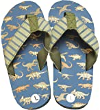 Hatley Boys' Lbh Kids Flip Flops-Blue Dinos Beach and Pool Shoes