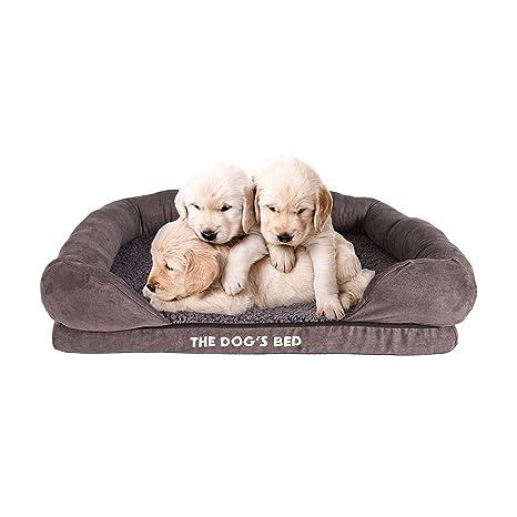 The Dogs cama con memoria