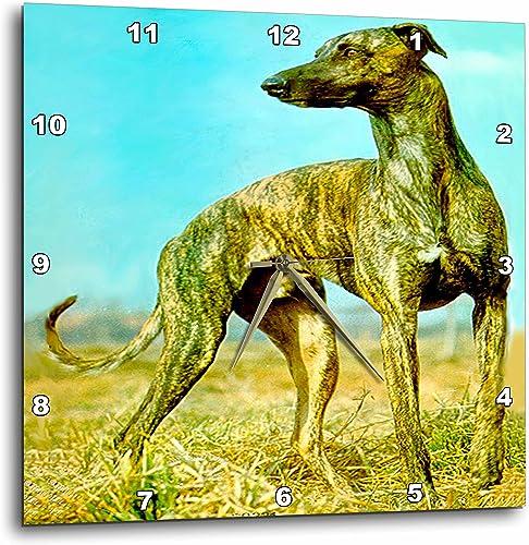3dRose Dogs Greyhound – Brindle Greyhound – 10×10 Wall Clock DPP_484_1
