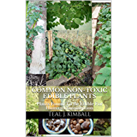 Common Non-Toxic Edible Plants: Plants Found To Be Edible For Human Consumption