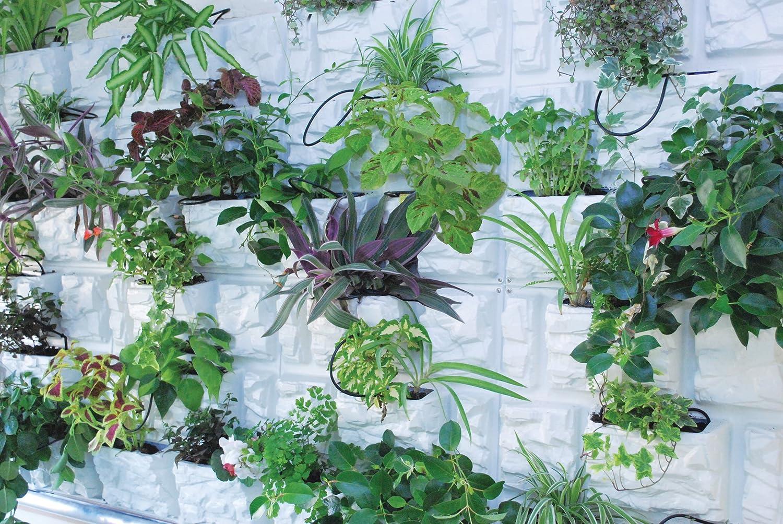 Amazon.com : Palram PlantScape Vertical Garden, Stone, 2-Pack ...