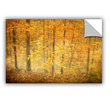 Antonio Raggios Lost in Autumn, Removable Wall Art Mural 16X24