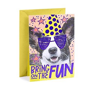 Amazon Hallmark Pop Up Birthday Card Dog Office Products
