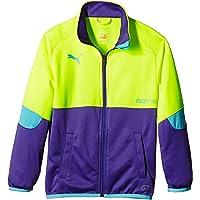 PUMA Jacke It Evotrg Track Jacket - Chaleco