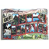 Greetings From Great Smoky Mountains Fridge Magnet (2 x 3 inches)