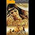 Nas amarras do Cowboy - Laina Suzan