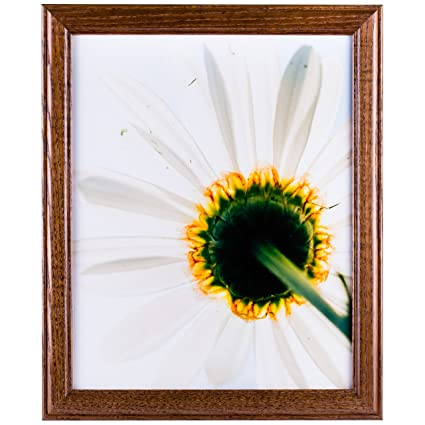 Craig Frames Wiltshire 236 Simple Hardwood Picture Frame, 4 x 6 Inch ...