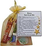 Boss Survival Kit Gift (New job, work gift, Secret santa gift for the boss)